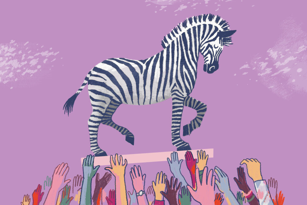 zebra_illustrator_credit_arthur_jones.jpg